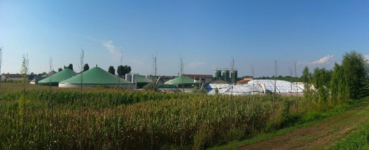 bioplyn, biomasa
